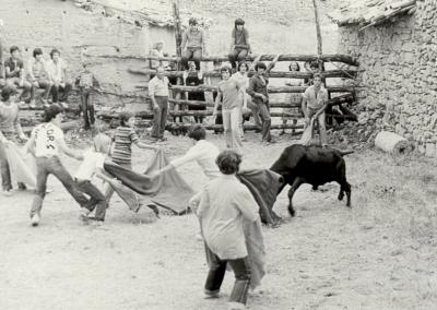 Fiestas vaquillas