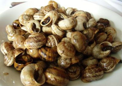 Libro de recetas caracoles