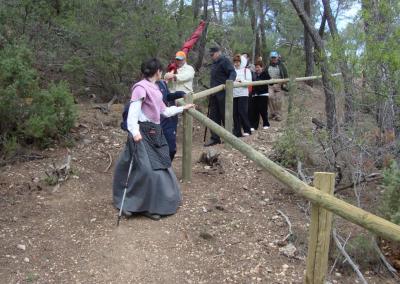 Romeria al santet 2011 bajada