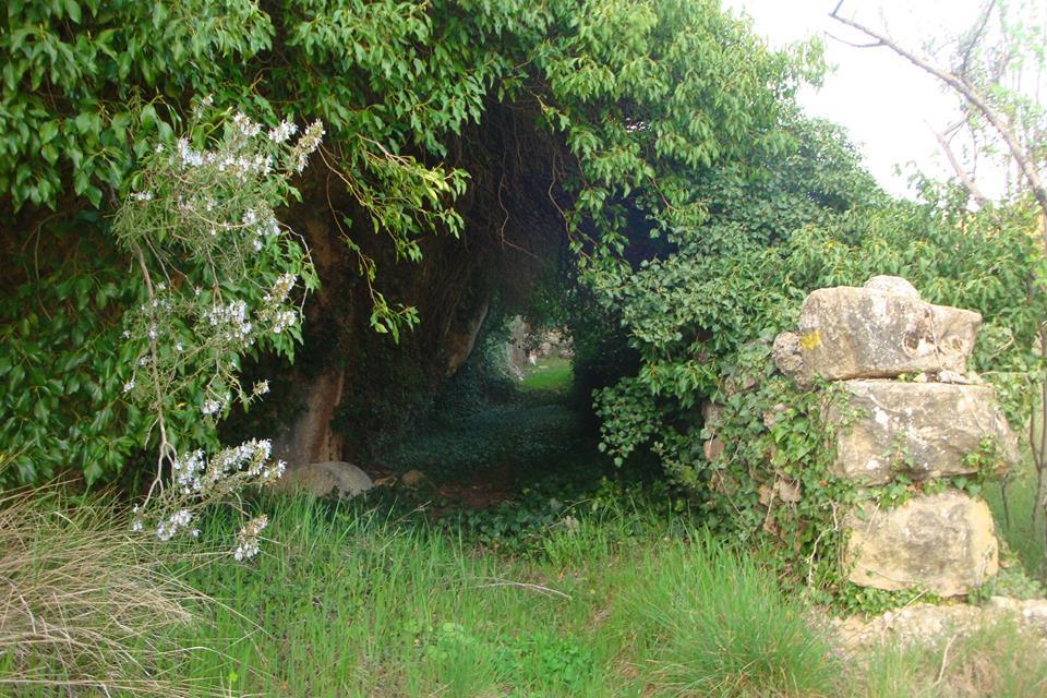 Ruta de la Cova del Molí