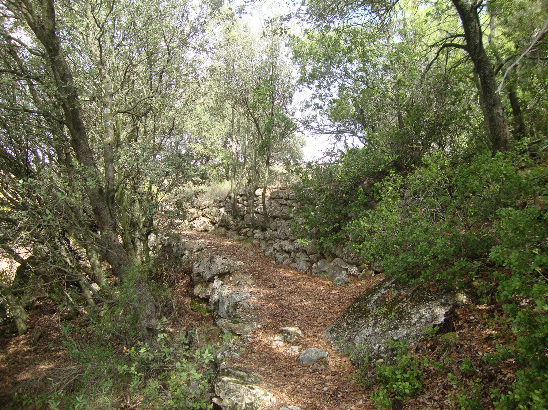 Senda hacia Font de Baix