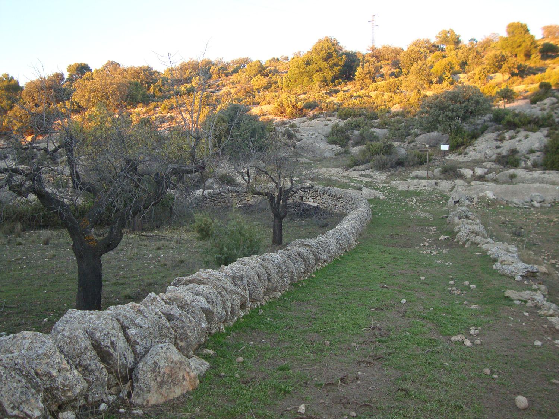 Cruce camino Cova del Molí