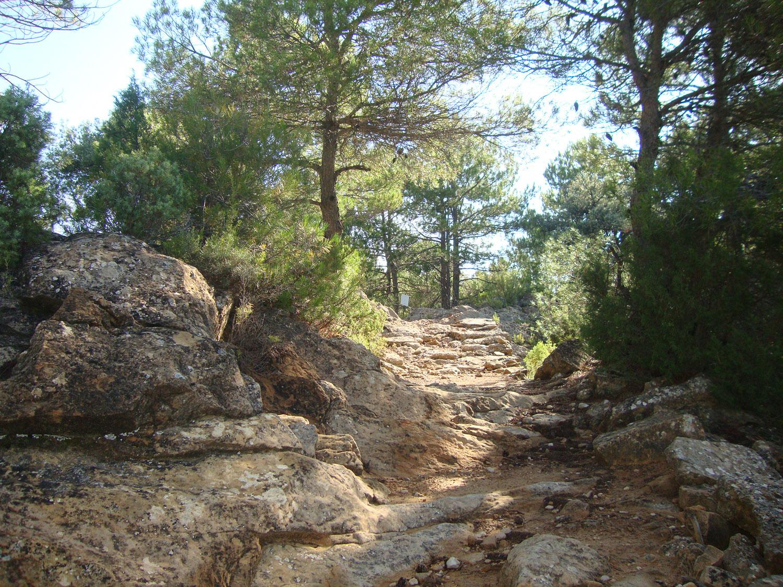 Camino a Belmonte