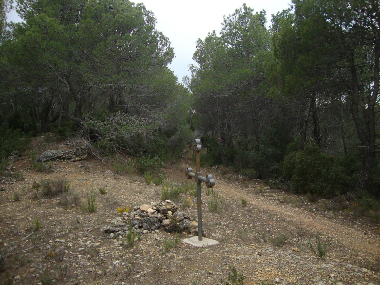 Cruce carretera-Font d'en Camps