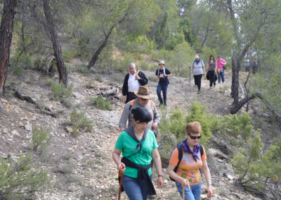 Romeria al santet 2015 caminantes